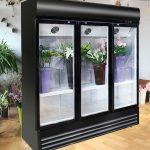 یخچال گل فروشی
